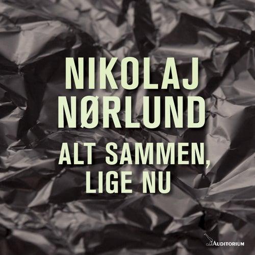 Alt Sammen, Lige Nu by Nikolaj Nørlund