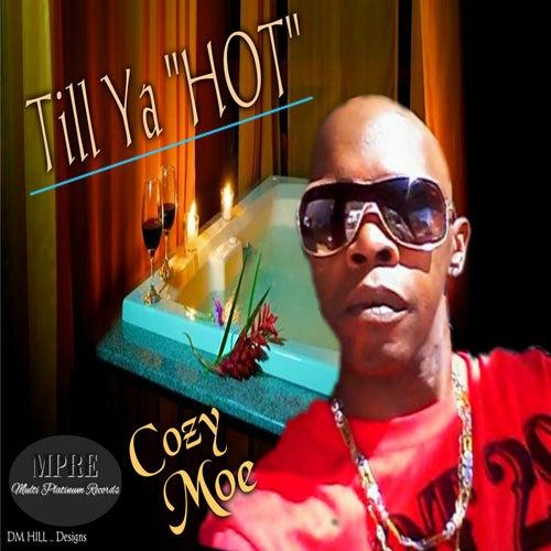 Till Ya Hot von Cozy Moe