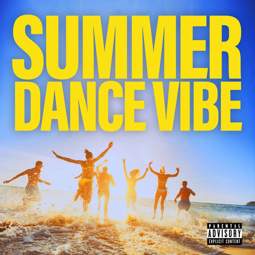 Summer Dance Vibe von Various Artists