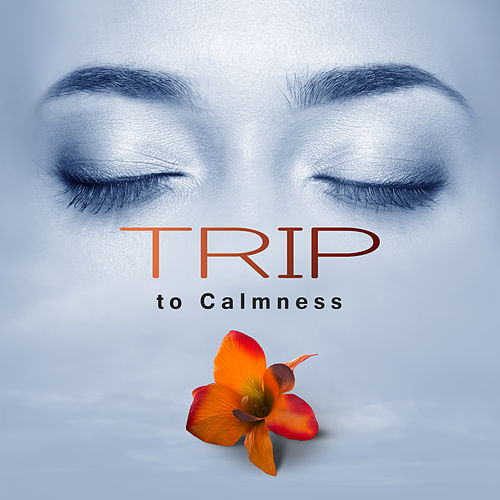 Trip to Calmness – Body Harmony, Spa Music, Relax, Massage Music, Nature Sounds Reduce Stress, Music for Beauty & Body by Relaxing Spa Music