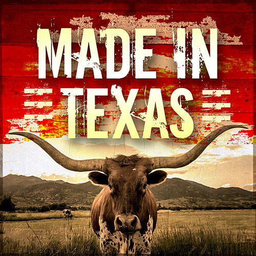 Made in Texas von Various Artists
