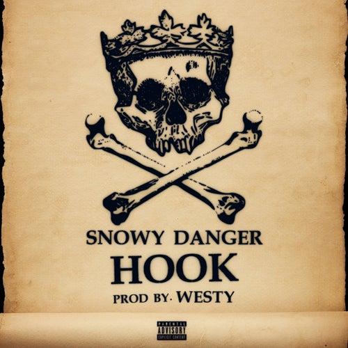 Hook di Snowy Danger