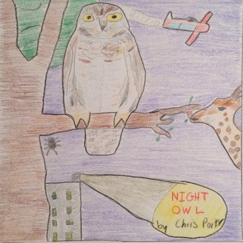 Night Owl van Chris Porter