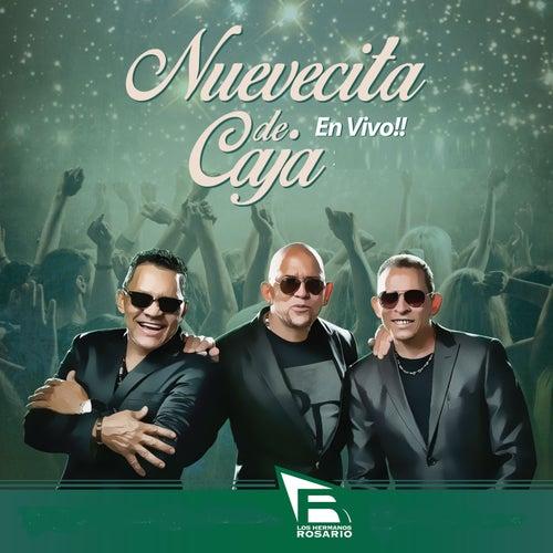 Nuevecita de Caja (En Vivo) by Los Hermanos Rosario
