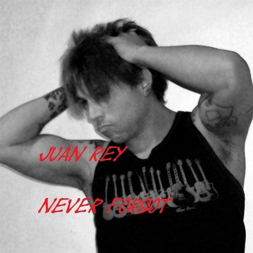 Never Forgot de Juan Manuel Rey