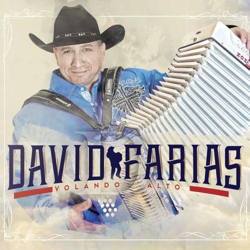 Volando Alto de David Farias