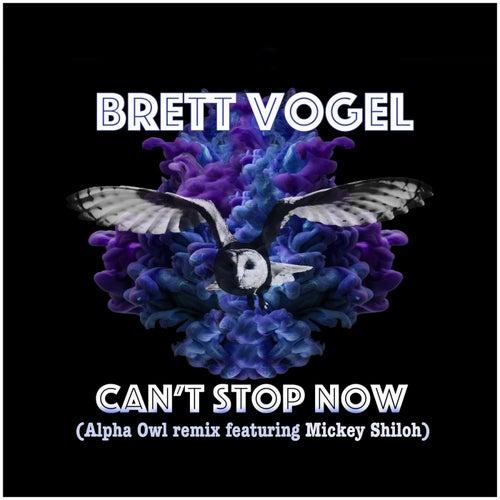 Can't Stop Now (feat. Mickey Shiloh) de Brett Vogel