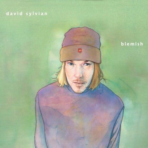 Blemish by David Sylvian