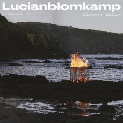Still No de Lucianblomkamp
