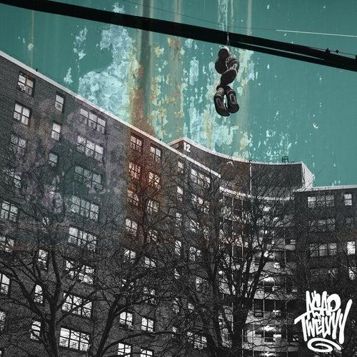 Hop Out de A$AP Twelvyy