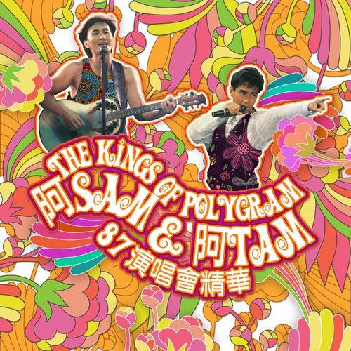 The Kings Of Polygram A Sam & A Tam 87 Yan Chang Hui Jing Hua (Live) by Various Artists
