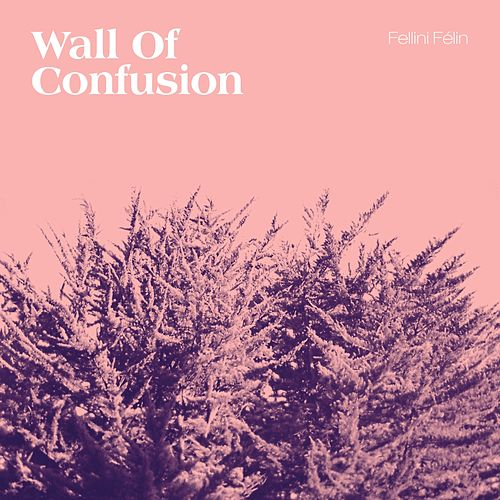Wall of Confusion by Fellini Felin