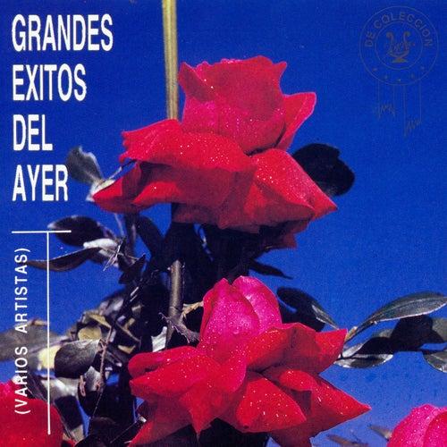 Grandes Éxitos del Ayer von Various Artists