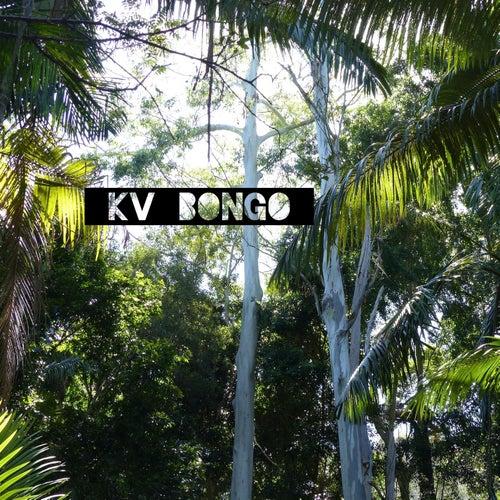 Bongo by K.V.