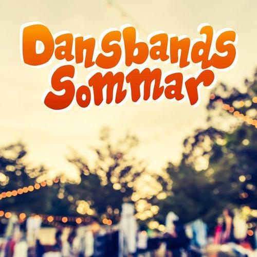 Dansbandssommar von Various Artists