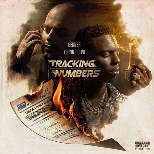 Tracking Numbers by Berner