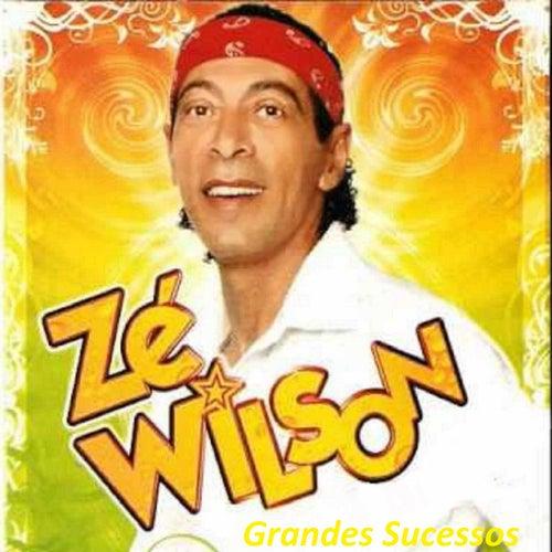 Grandes Sucessos de Zé Wilson