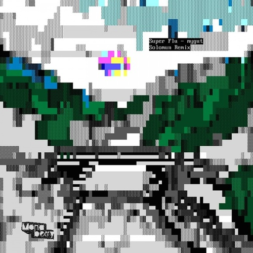 mygut (Solomun Remix) by Super Flu (1)
