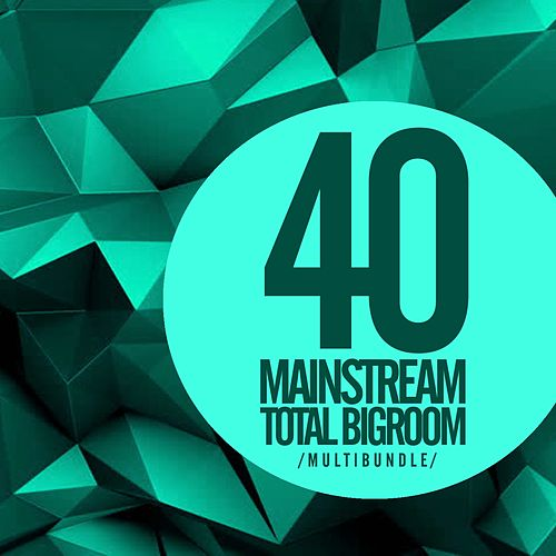 40 Mainstream Total Bigroom Multibundle - EP by Various Artists