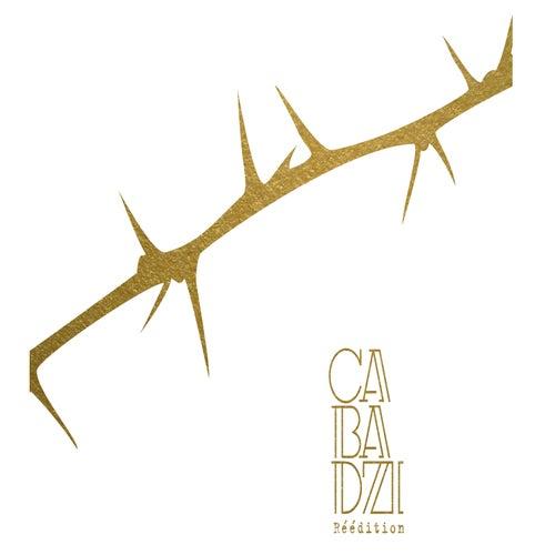 Des angles et des épines (Réédition) de Cabadzi