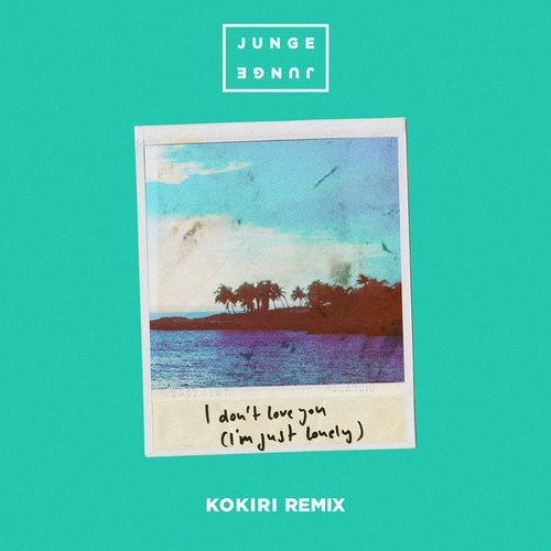 I Don't Love You (I'm Just Lonely) (Kokiri Remix) by Junge Junge