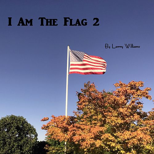 I Am the Flag 2 by Larry Williams