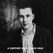 A Century Ends by David Gray