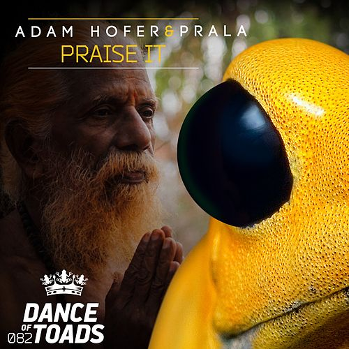 Praise It by Adam Hofer
