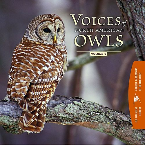 Voices of North American Owls (Vol. 2) by Cornell Lab of Ornithology