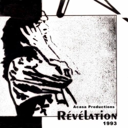 Festival Révélation 1993 de Various Artists