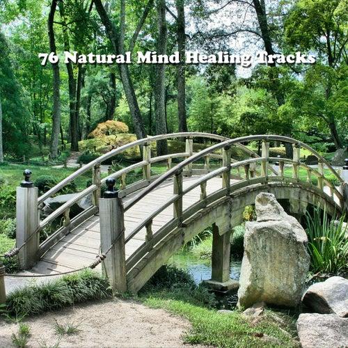 76 Natural Mind Healing Tracks von Best Relaxing SPA Music