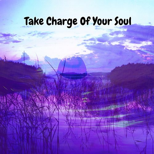 Take Charge Of Your Soul de Yoga Workout Music (1)