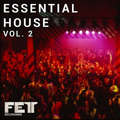 Essential House Vol. 2 - EP de Various Artists