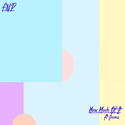 How Much of It by FNP