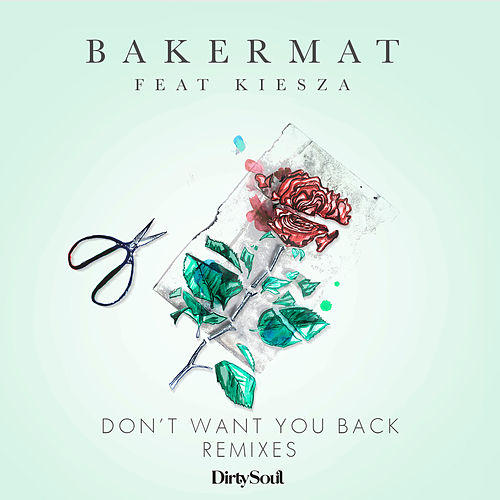 Don't Want You Back (Remixes) van Bakermat