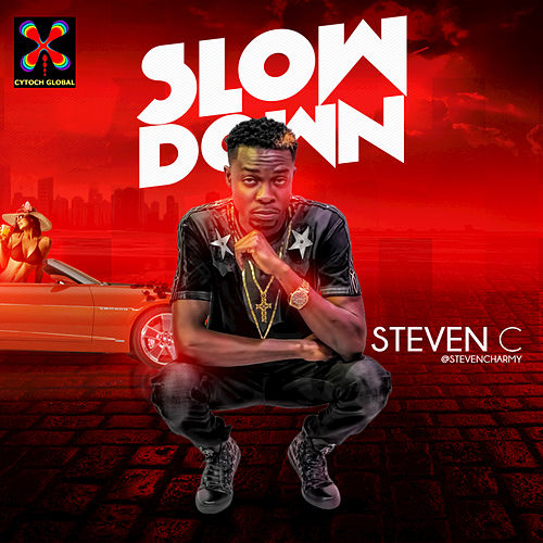 Slow Down by Steven C