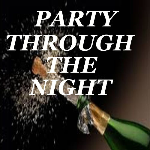 Party Through The Night by Various Artists