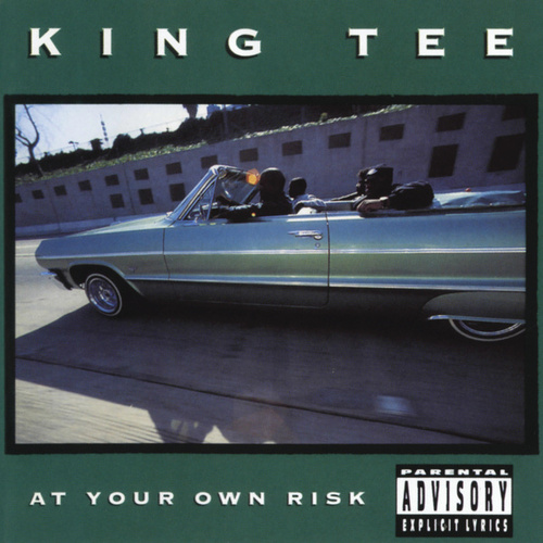 At Your Own Risk von King Tee