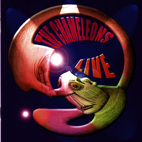 Live at The Academy Vol. 1 von The Chameleons