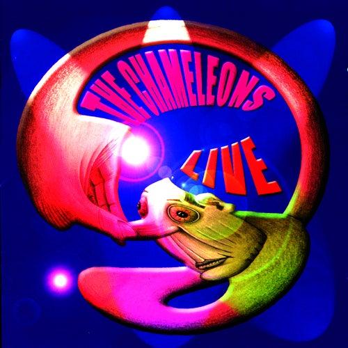 Live at The Academy Vol. 2 von The Chameleons