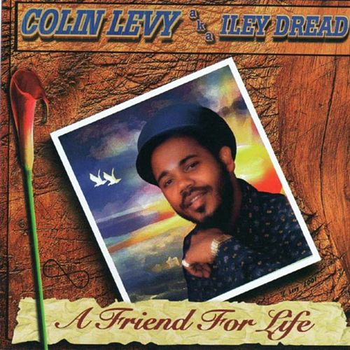 A Friend for Life by Colin Levy