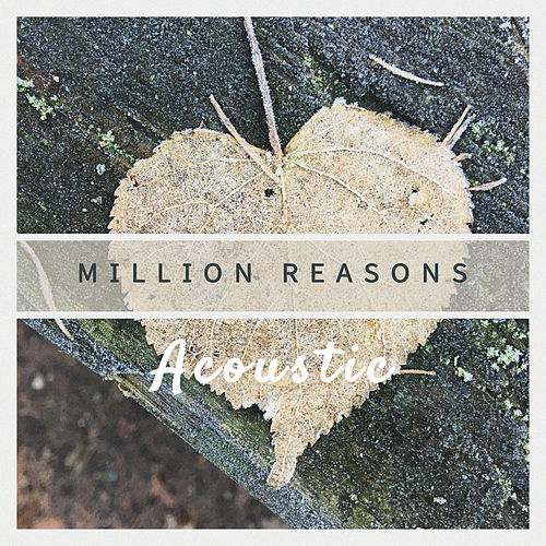 Million Reasons (Acoustic) by Paul Canning