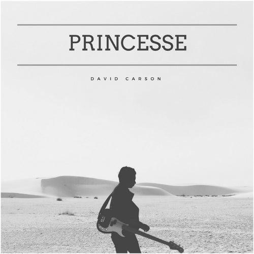 Princesse by David Carson