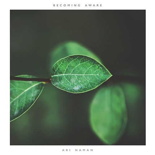 Becoming Aware by Ari Naman