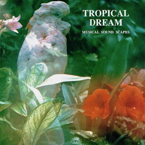Tropical Dream (Musical Soundscapes) by Jonas Kvarnström