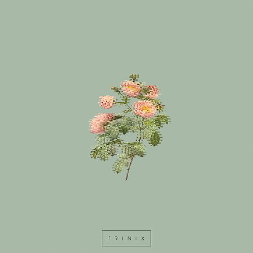 Everything by Trinix