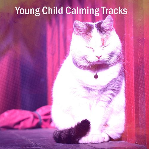 Young Child Calming Tracks de White Noise for Babies