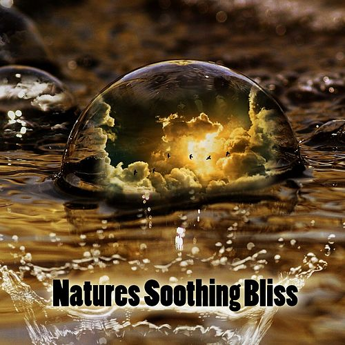 Natures Soothing Bliss von Best Relaxing SPA Music