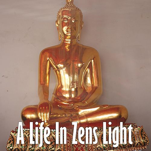 A Life In Zens Light de Zen Meditate