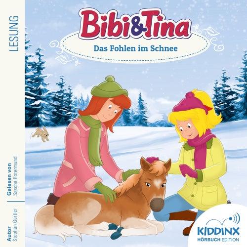 Hörbuch: Das Fohlen im Schnee (ungekürzt) von Bibi & Tina